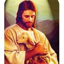 Szentbeszéd 2019.05.12 (Húsvét 4. vasárnap – Jópásztor)